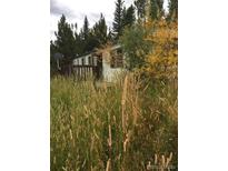 View 230 Little Creek Rd Idaho Springs CO