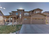 View 10738 Braesheather Ct Highlands Ranch CO