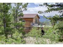 View 2505 York Gulch Rd Idaho Springs CO