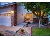 View 35 Canongate Ln Highlands Ranch CO