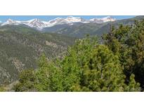 View 270 S Saddle Dr Idaho Springs CO