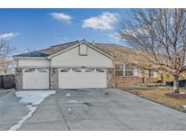 View 9862 Indian Wells Dr Lone Tree CO
