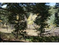 View 11946 Silver Bear Rd Conifer CO