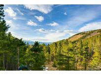 View 451 Mountain View Dr Idaho Springs CO