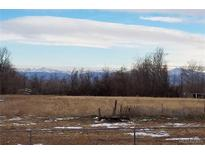 View 15899 Nancy Ave Fort Lupton CO