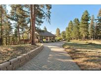 View 24867 Red Cloud Dr Conifer CO