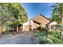 View 27126 Sun Ridge Dr Evergreen CO