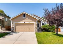 View 10361 Ravenswood Way Highlands Ranch CO