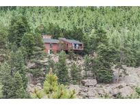 View 11911 Kings Ct Conifer CO