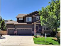 View 10615 Redcone Way Highlands Ranch CO