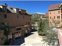 View 505 S Main St Breckenridge CO