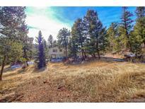View 27362 Log Trl Conifer CO