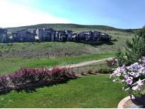 View 10444 Rivington Ct Lone Tree CO