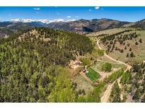 View 1810 York Gulch Rd Idaho Springs CO