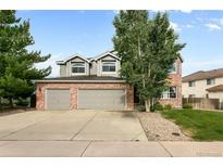 View 9326 Erminedale Dr Lone Tree CO