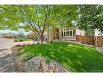 View 9302 Desert Willow Rd Highlands Ranch CO