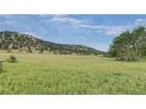 View 621 W Meadow Rd Evergreen CO