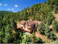 View 4600 Olympic Way Evergreen CO